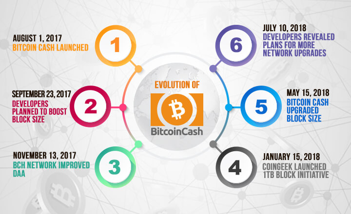 Evolution of Bitcoin Cash: 6 Major Developments in First 12 Months