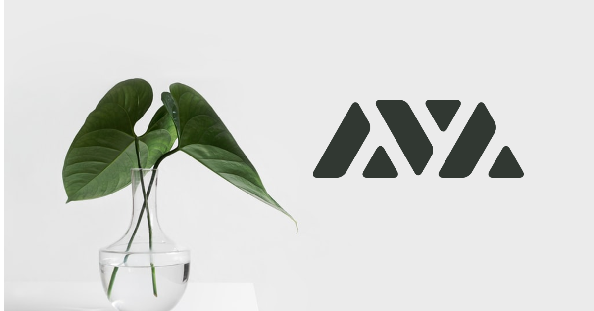 "Ava Labs Release Their Very Own Blockchain ""Ava"""
